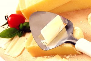best cheese slicer